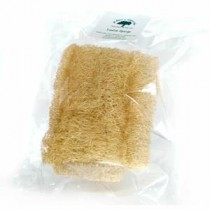 Naturally-Harvested Loofah Sponge